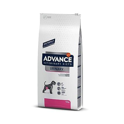 Advance Veterinary Diets Urinary Pienso para Gatos, 12 kg