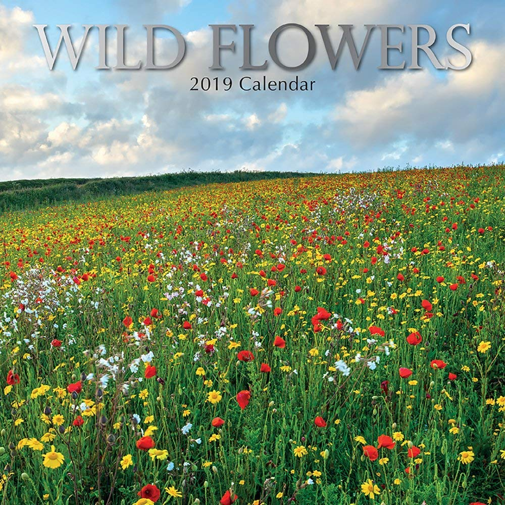 2019 Wild Flowers - 30 X 30 Cm Calendario Da Parete In Inglese The Gifted Stationary
