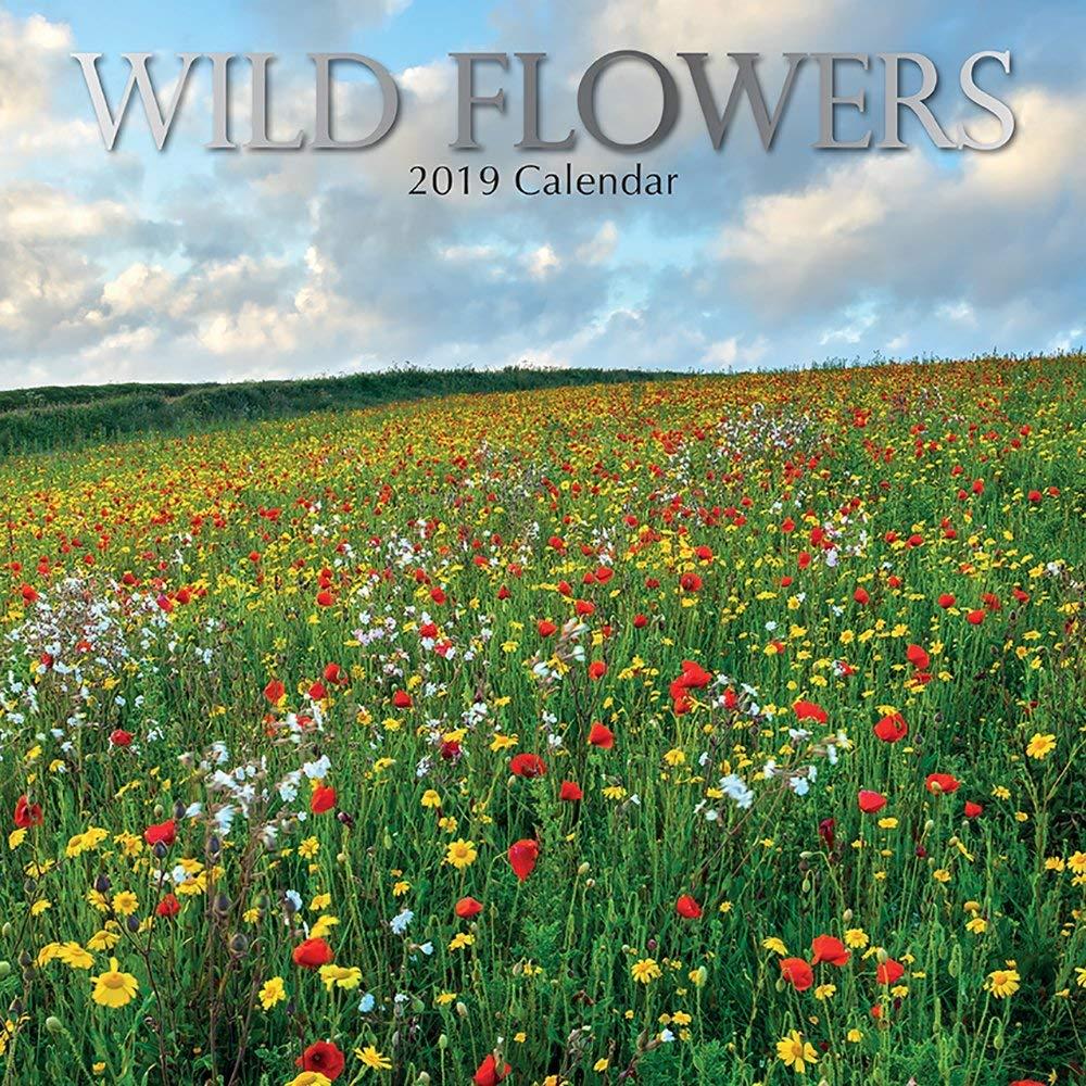 2019 Wild Flowers - 30 X 30 Cm Calendario Da Parete In Inglese The Gifted Stationary