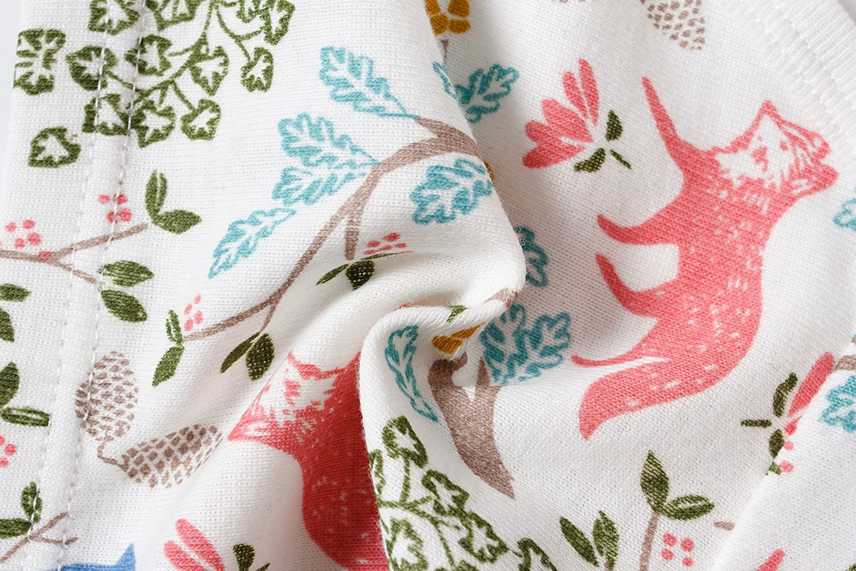 Pack of 6 Baby Soft Cotton Underwear Little GirlsBriefs Toddler Undies