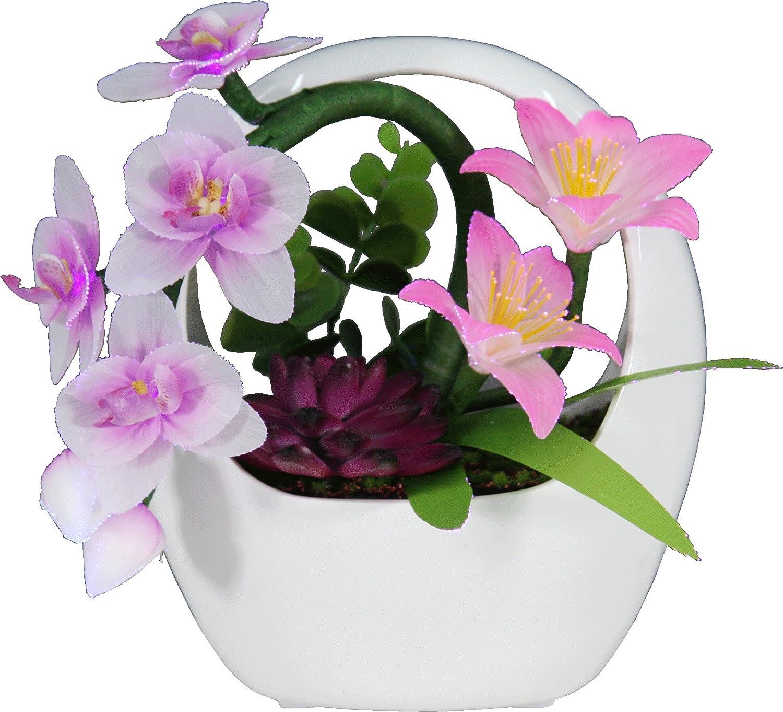 LED造花 ルミナスカリーノ 蘭 1310660 B0722LGP4X