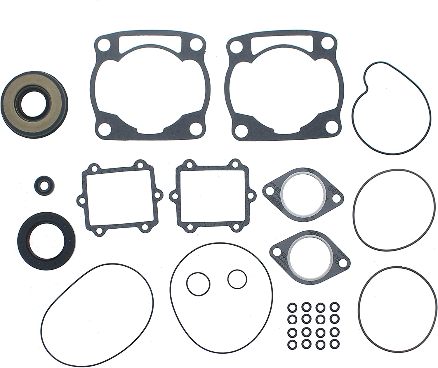 Piston and Gasket Kit for Arctic Cat ZL 500 1998 1999 2000 by Race-Driven