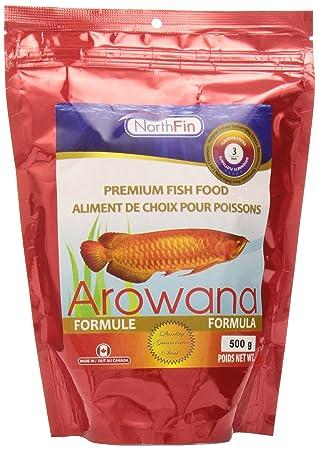 Northfin Alimentos Arowana fórmula Flotante Sticks 3 mm Paquete de 500 G: Amazon.es: Productos para mascotas