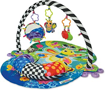 Lamaze Freddie The Firefly Gym, Multicoloured