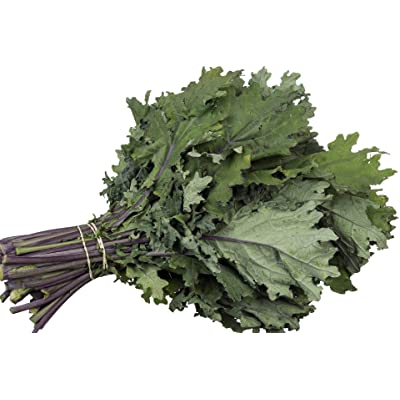"""Red Russian"" Kale Seeds, 750+ Premium Heirloom Seeds, ON SALE!, Top Selling Kale Seed, (Isla's Garden Seeds), Non Gmo Organic, 85% Germination Rates, Highest Quality Seeds, 100% Pure : Garden & Outdoor"