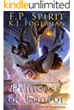 Princess of Lanfor (Heroes of Ravenford Book 4) (English Edition)