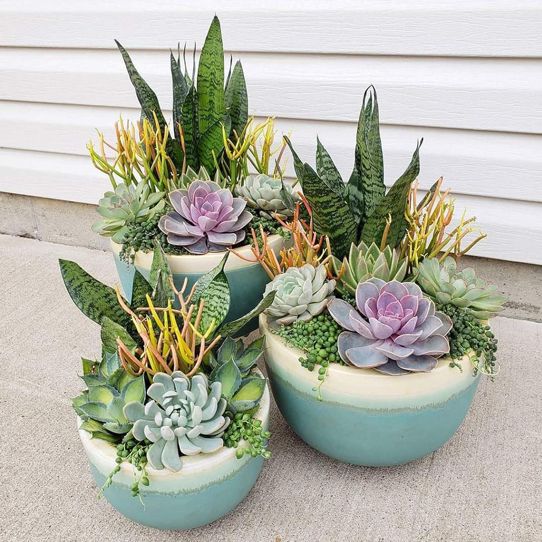 CEWOR 20pcs Artificial Flocked Succulent Fake Plants for DIY Home Garden Arrangement Office Decoration