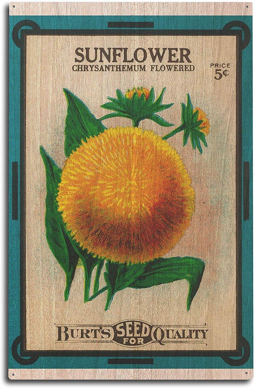 PotteLove Paquete de Semillas de Girasol 10 x 15 Placa de Madera para decoración de Pared