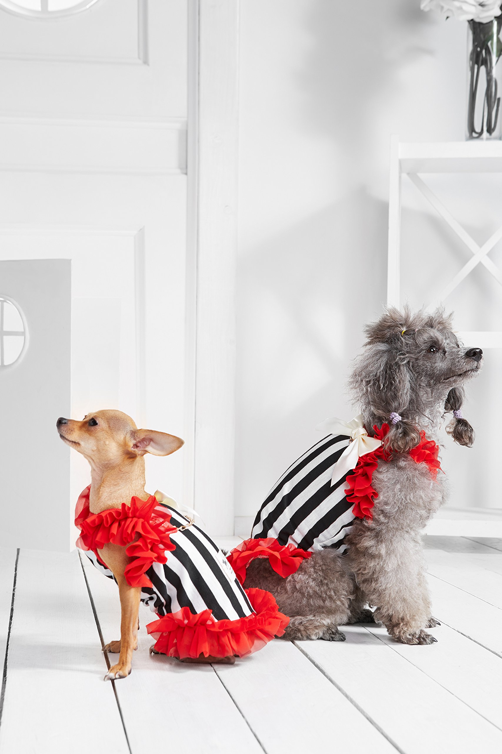 """Small Dog Striped Dress With Ruffles Satin Bow Chain Dogs Cotton Summer Clothes (Toy Plus: 10"""" / 5-9 lbs, Red, Black, White) by Nothing But Love Pets (Image #1)"""