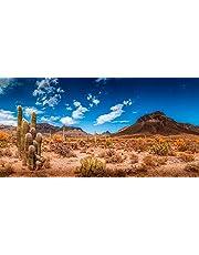 "BannersNStands Reptile Habitat, Terrarium Background, Blue Sky with Mountains & Cactus - (Various Sizes) (18"" H x 36"" W)"