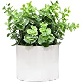 Admired By Nature Artificial Eucalyptus Plant with Ceramic Pot, Green
