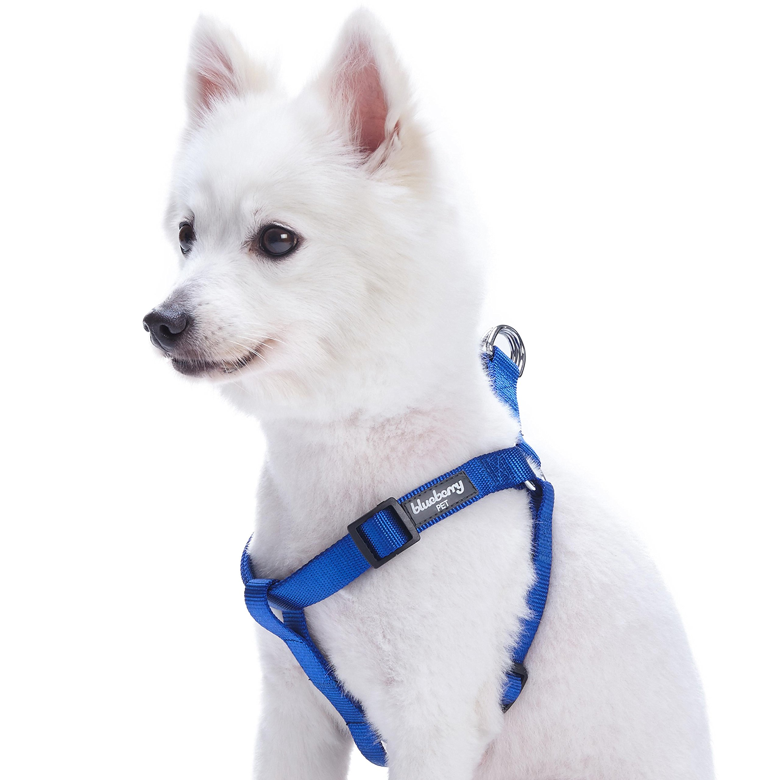 Blueberry Pet 19 Colors Step-in Classic Dog Harness, Chest Girth 16.5'' - 21.5'', Royal Blue, Small, Adjustable Harnesses for Dogs