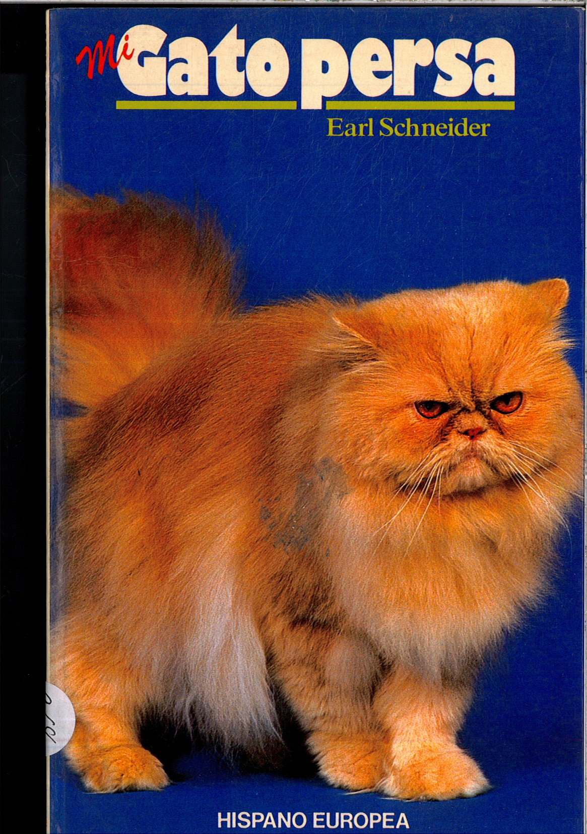 Mi Gato Persa (Spanish Edition) (Spanish) Paperback – November, 1995
