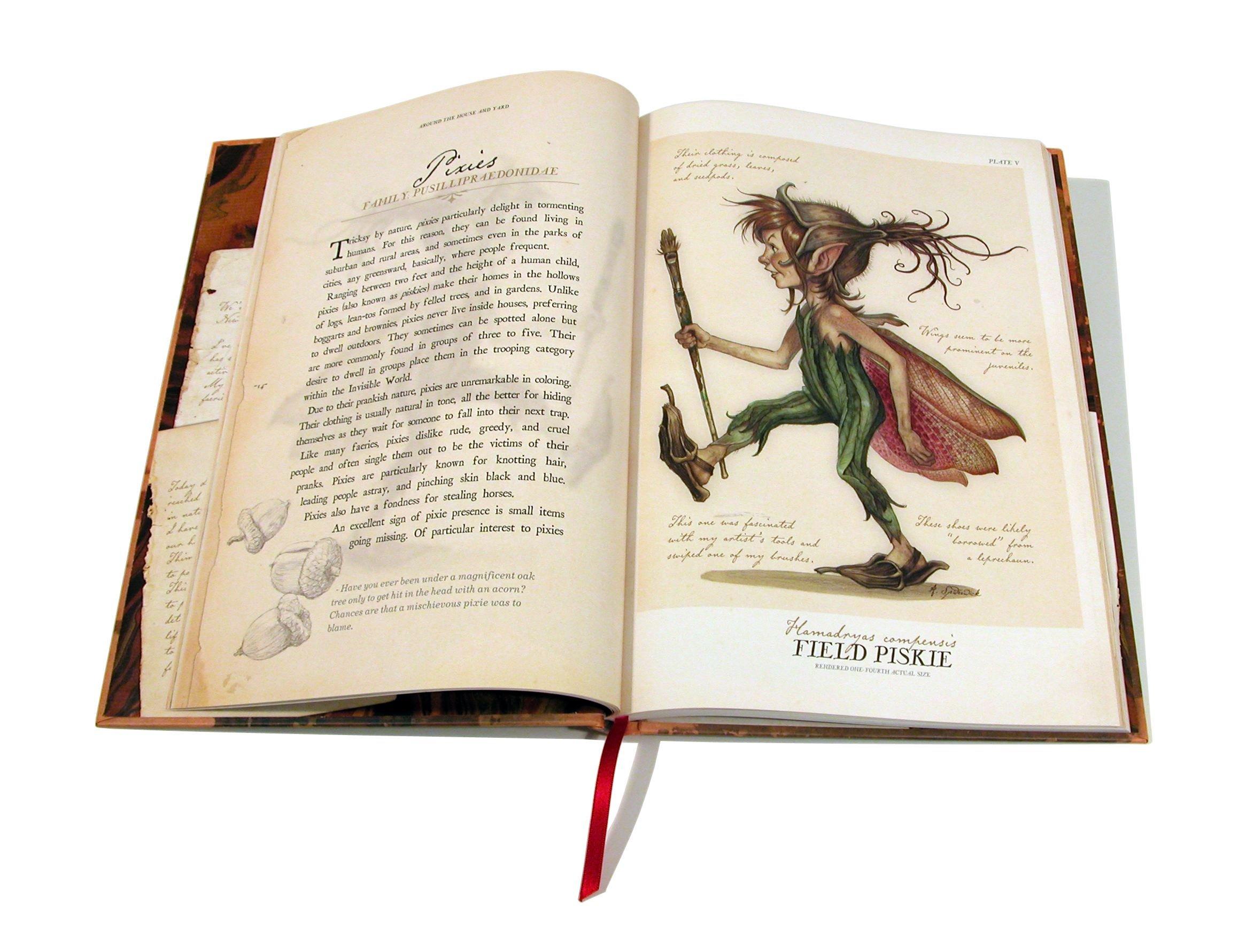 Arthur Spiderwick's Field Guide To The Fantastical World Around You: Holly  Black, Tony Diterlizzi: 8601200543506: Amazon: Books
