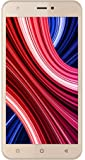 Intex Aqua Cloud Q11- 4G (Champagne, 8GB)