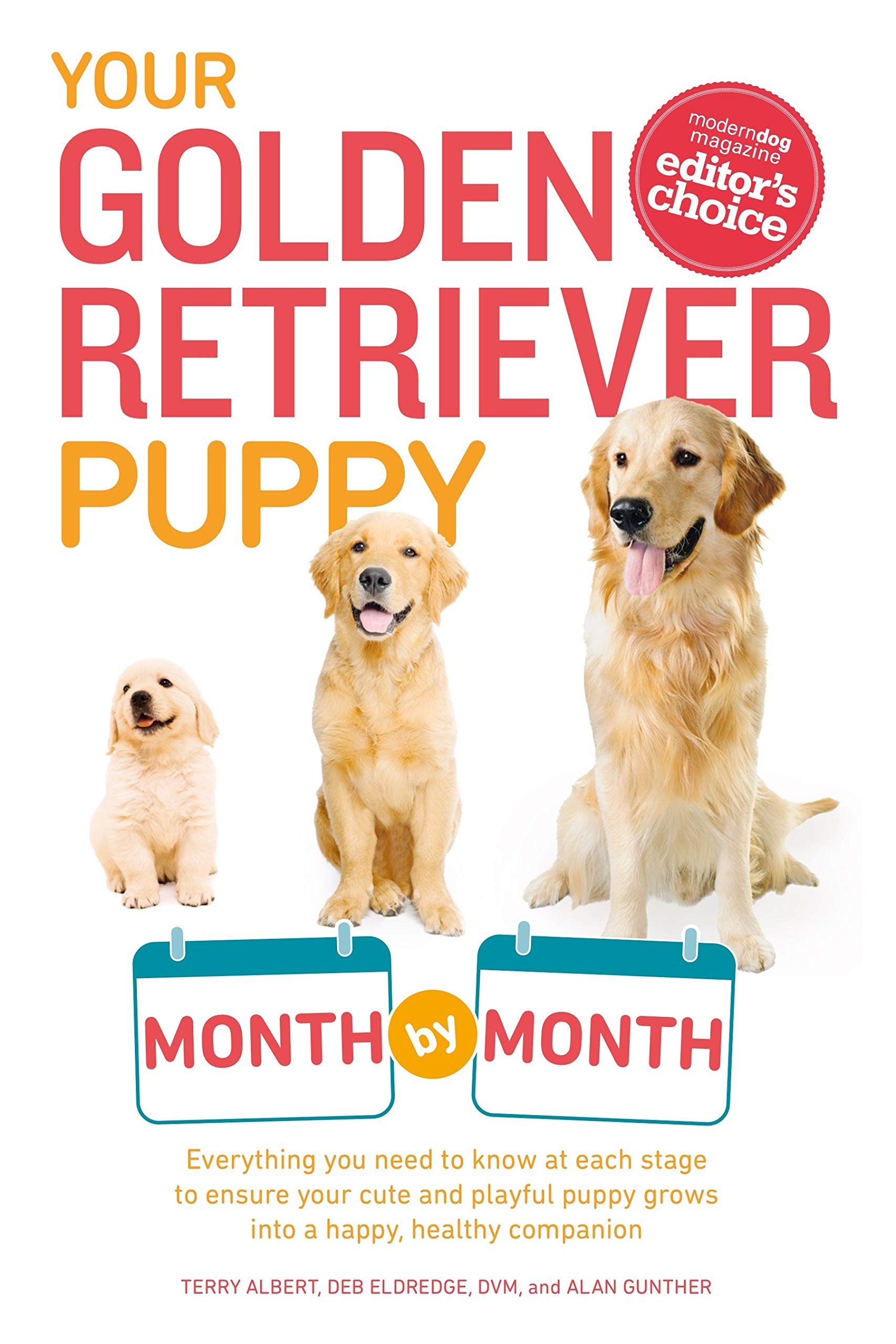 Your Golden Retriever Puppy Month by Month: Everything You Need to Know at Each Stage to Ensure Your Cute and Playful Puppy (Your Puppy Month by Month) by Albert Terry