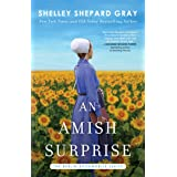 An Amish Surprise (Berlin Bookmobile Series, The Book 2)