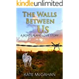The Walls Between Us: A Borderland Love Story