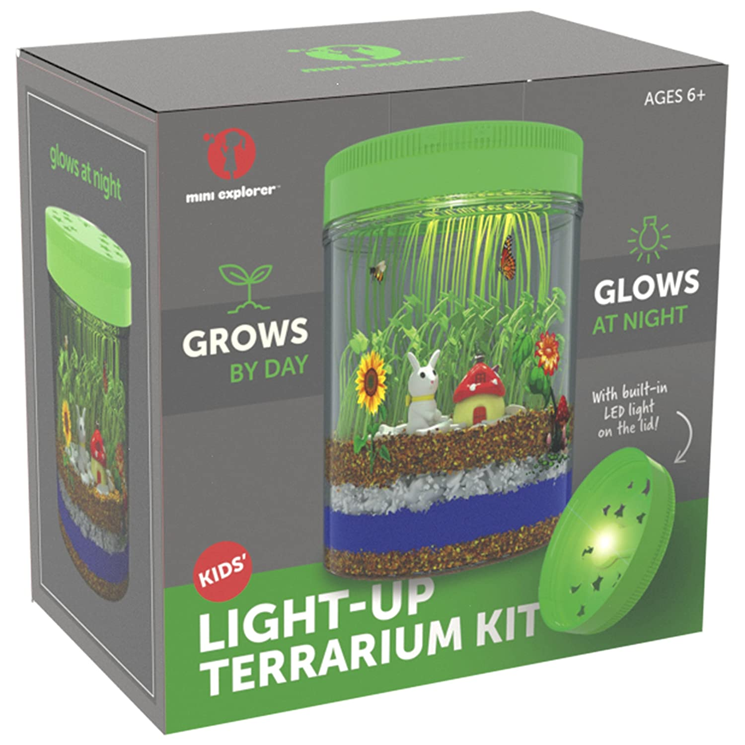 Amazon Light up Terrarium Kit for Kids with LED Light on Lid