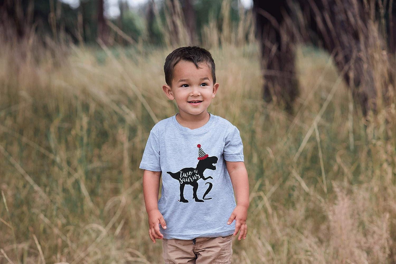 7 ate 9 Apparel Kids Two Dinosaur Birthday Grey T-Shirt