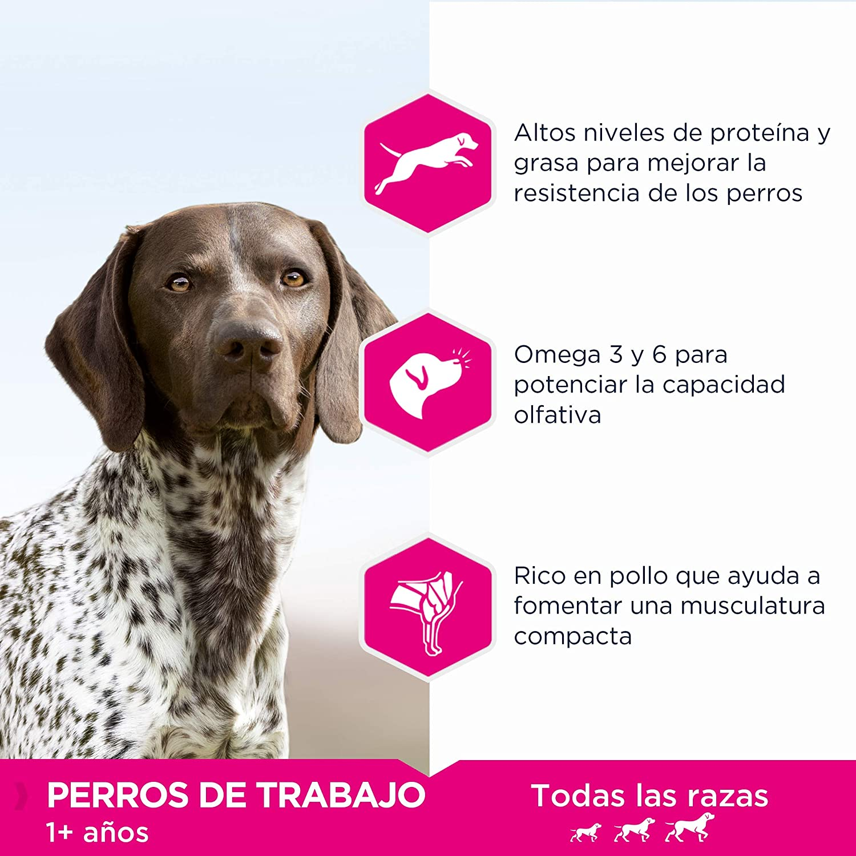 EUKANUBA Daily Care Working & Endurance - Alimento Seco para Perros Adultos, Receta para Trabajo y Resistencia 15 kg