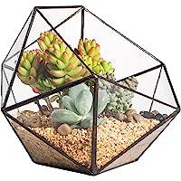 Moderno terrario poliédrico triangular de cristal, de fabricación