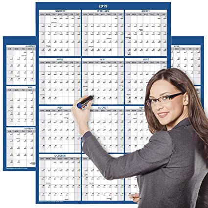 a1ad6c83b7 Amazon.com   Delane 2019 Yearly Wet and Dry Erase Wall Calendar