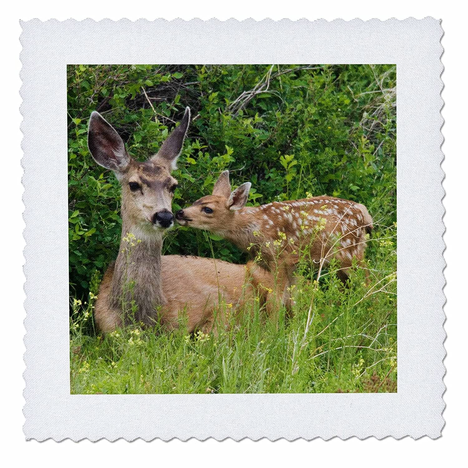 3D Rose Mule Deer Doe with Fawn Square 12 by 12 Inch Quilt 12 x 12