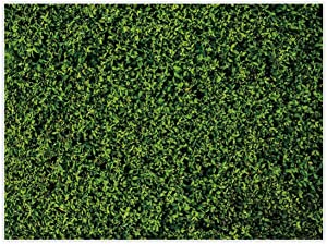 Allenjoy 8x6ft Nature Green Lawn Leaves Backdrop for Photography Grass Floordrop pictures Background Spring Party Ground Decor Outdoorsy Theme Newborn Baby Shower Lover Wedding Photo Studio Props Drop