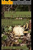 Big Bones (Butterscotch Jones Mysteries Book 2)