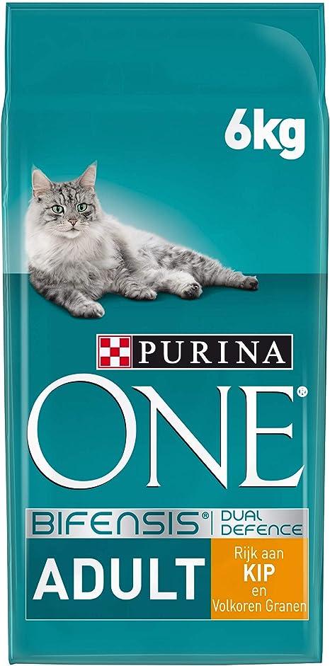 Purina ONE - Bifensis, con Pollo y Cereales para Gato Adulto 6 Kg ...