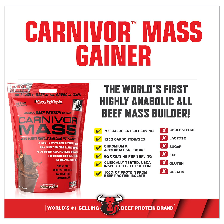 Musclemeds carnivor de chocolate 4,5 kg masa: Amazon.es ...