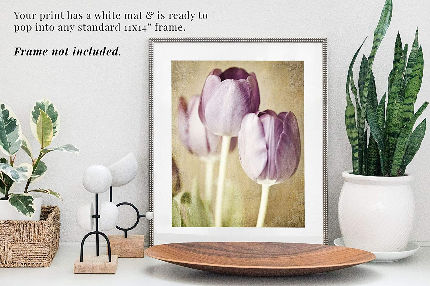 Fits 11x14 Frame Pastel Purple Tulip Flower Decor Pre-Matted 8x10 Print Shabby Chic Wall Art Nursery or Bedroom Artwork. Botanical Nature Photography for Bathroom