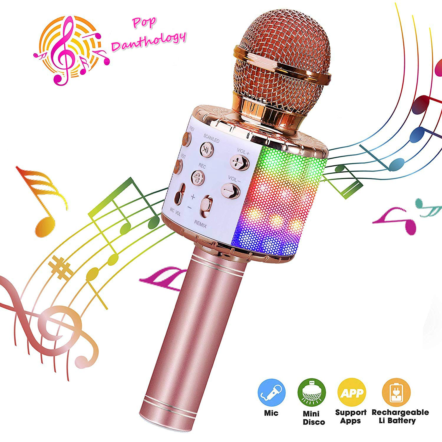 ShinePick Wireless 4 in 1 Bluetooth Karaoke Microphone, Handheld Portable Karaoke Machine, Home KTV Player with Record Function, Compatible with Android & iOS Devices(Pink) by ShinePick