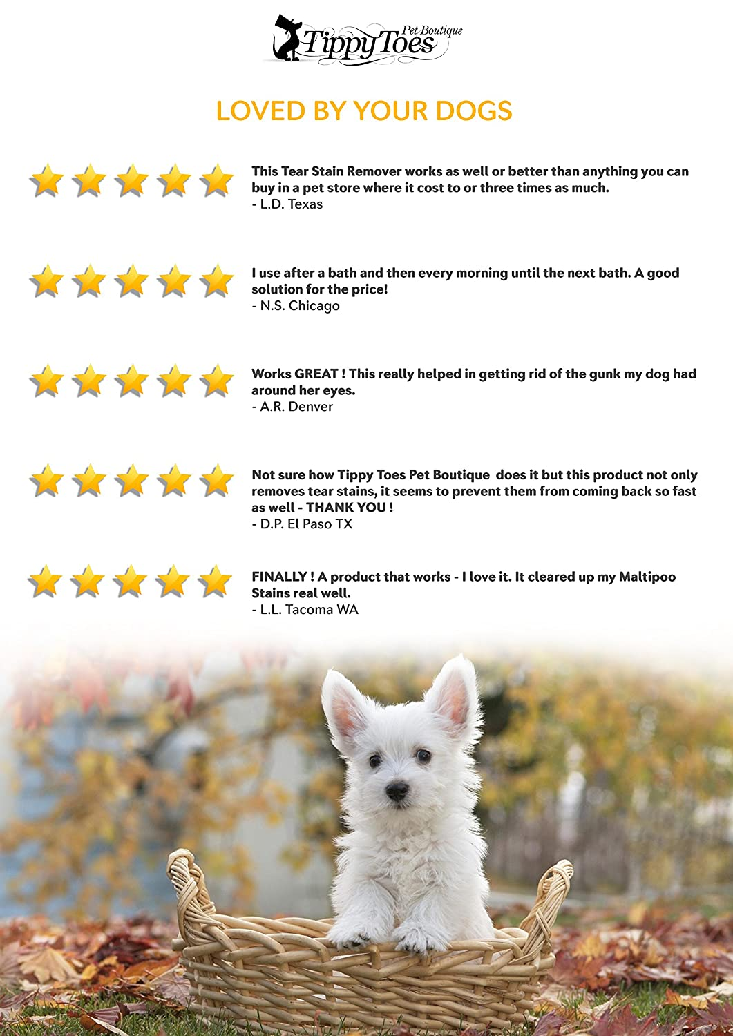 Amazon tear stain remover for dogs natural and gentle on amazon tear stain remover for dogs natural and gentle on white fur our premium quality treatment cleans your dogs tears and remove eye build up solutioingenieria Gallery