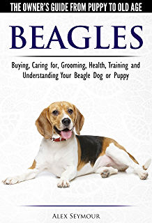 Your Beagle Puppy Month by Month: Everything You Need to