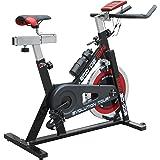 ECO-DE Bicicleta de Spinning Evolution Tour. Uso semiprofesional con Pulsómetro, Pantalla LCD y Resistencia Variable. Estabilizadores. Completamente Regulable.