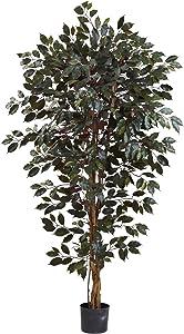 Nearly Natural 5436 Capensia Ficus Tree, 6-Feet,Multicolor
