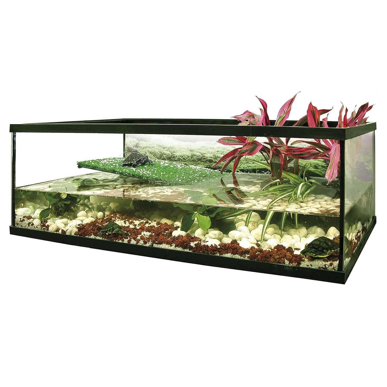 ICA KFL40 Florida - Kit para tortuguera de cristal: Amazon.es: Productos para mascotas