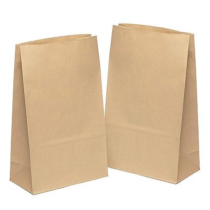 50 piezas Bolsas de Papel Regalo 31 x 19 x 10 cm - Bolsa Biodegradable Regalos Comunión para Invitados o para Guardar Comida, Semillas Flores, Dulces, ...