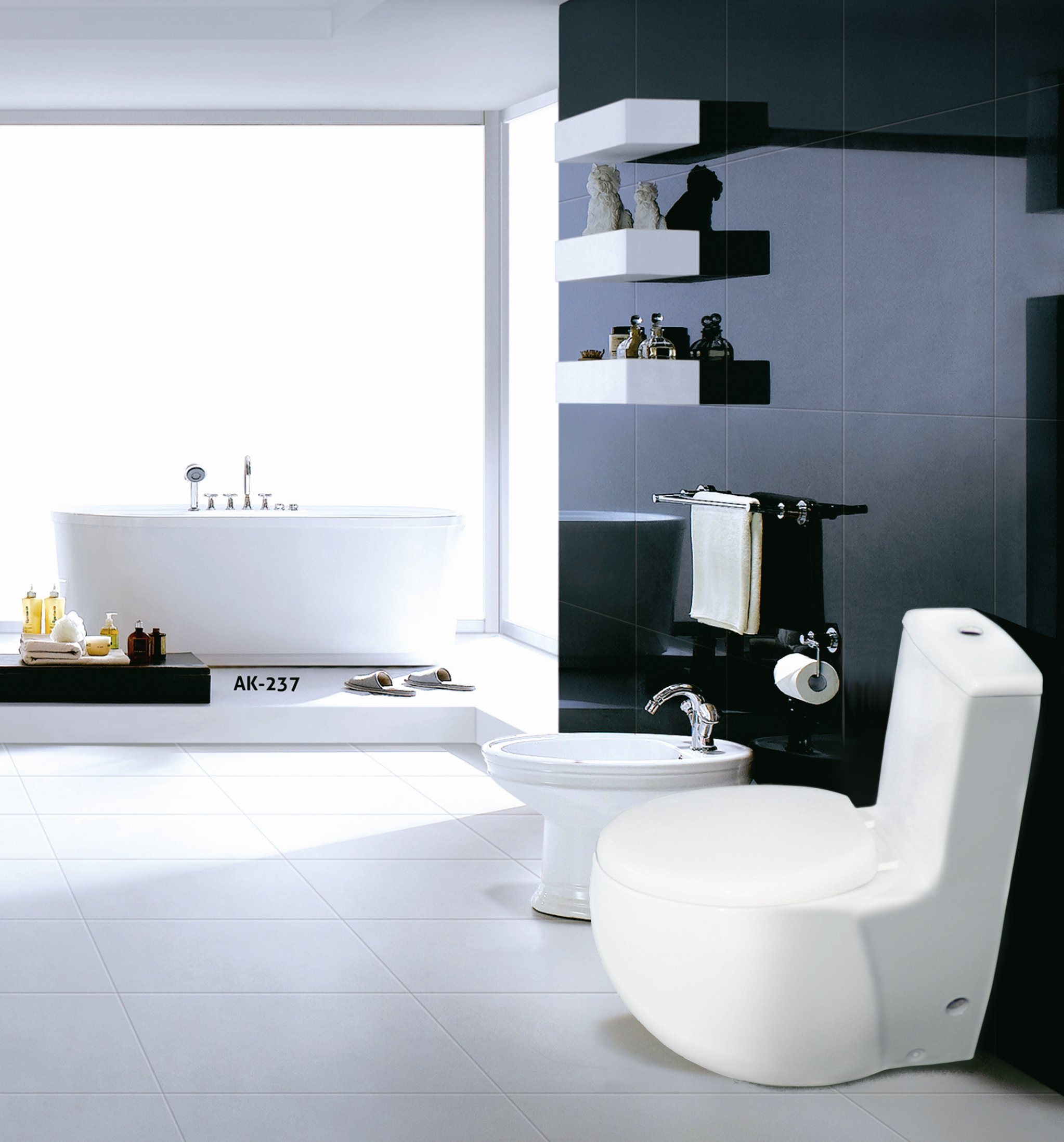 Euroto Luxury Toilet for Bathroom Toilet Bowls, Toilets, and Toilet Seats. Smart Toilet (Compact Elongated, Dual Flush(Siphonic)) by EUROTO (Image #4)