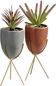 TERESA'S COLLECTIONS Artificial Pre-Made Succulent Plants Potted,Faux Greenery in Head Face Ceramic Planter Pot with Iron Stand for Plants Arrangement(Set of 2)