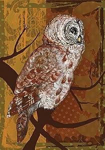 "Toland Home Garden 109415 Night Owl 28 x 40 Inch Decorative, House Flag (28"" x 40"")"