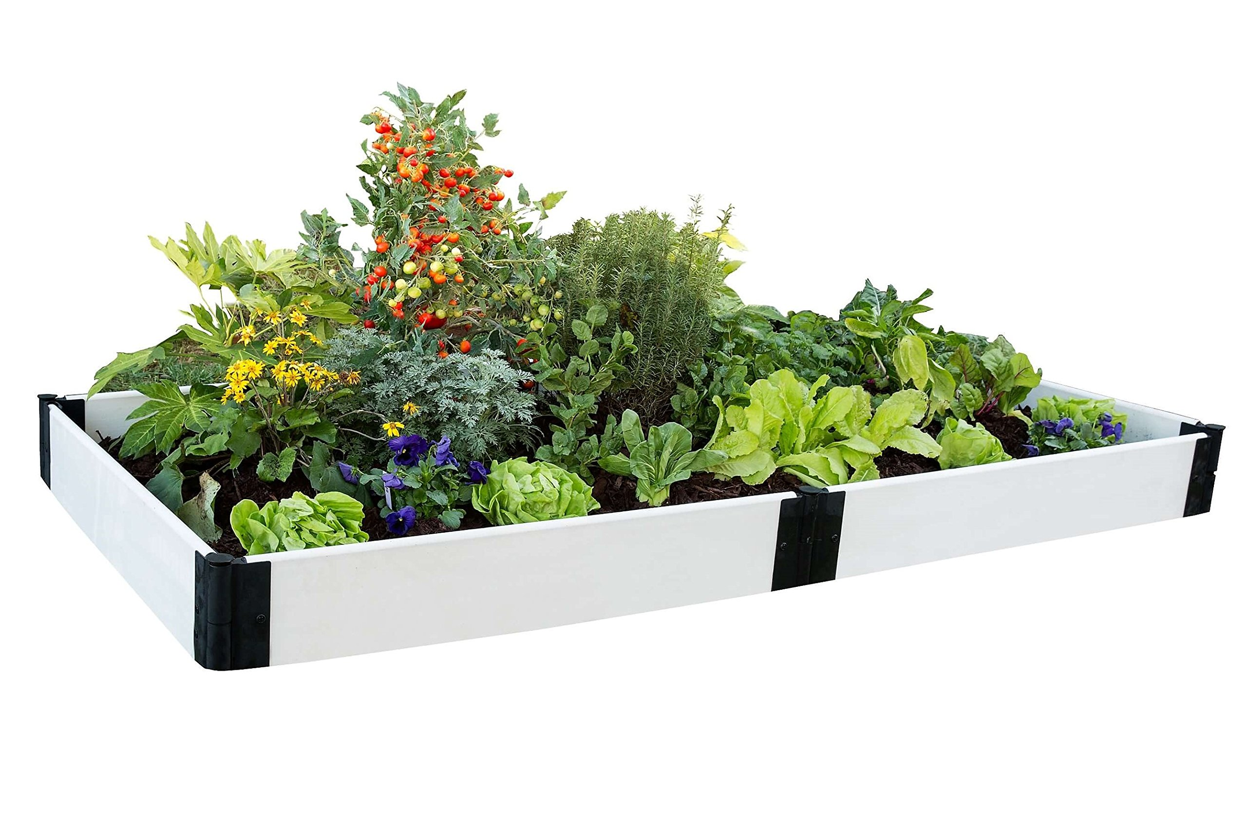 Frame It All 4ft x 8ft White Raised Garden Kit by Frame It All