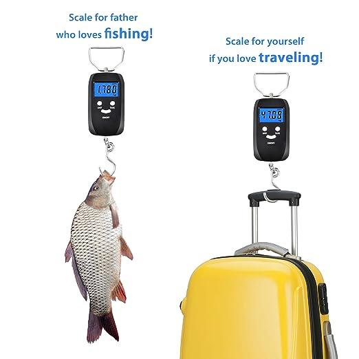Básculas de equipaje, báscula de mano FILWO Báscula de pesaje Pantalla LCD Básculas digitales electrónicas que cuelgan balanzas de viaje portátiles con ...