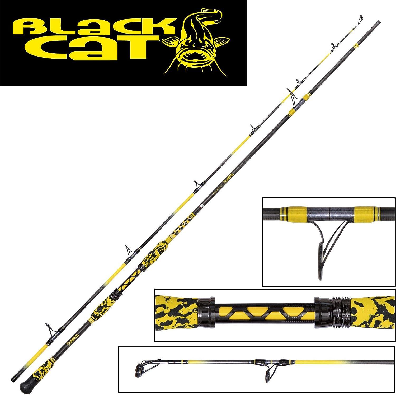 Black Cat Light Spin 2,40 m caña de pescar siluro, caña de ...