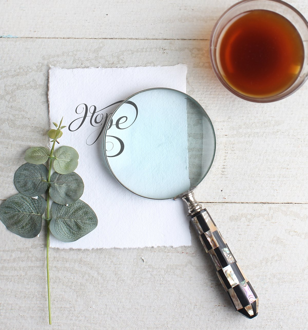 Store Indya – Vintage Magnifying Glass – Handheld Magnifier for Reading Inspection Crossword Puzzles Maps