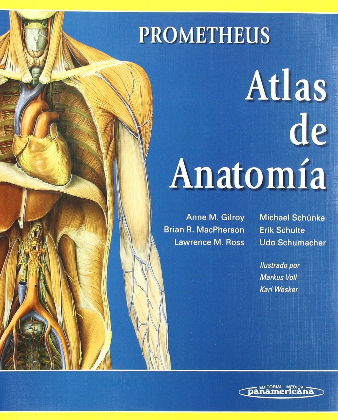 Anatomia con orientacion clinica / Clinically Oriented Anatomy ...