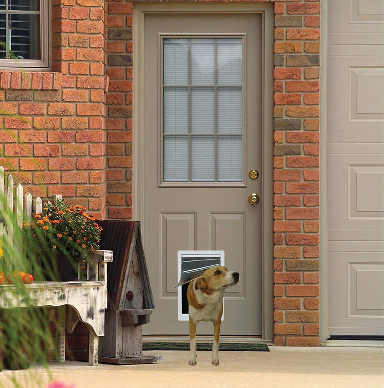 best in wall dog doors 4