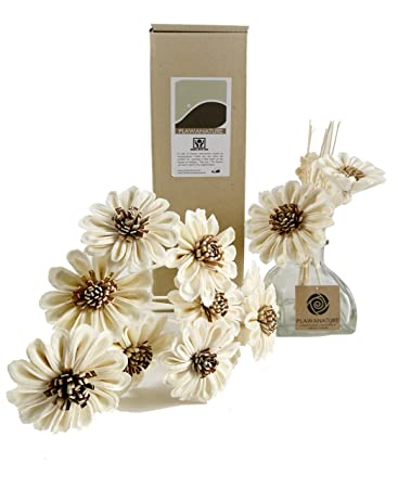 Amazon Plawanature Set Of 10 White Sun Flower Sola Wood Flower